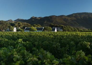 Cape colonial